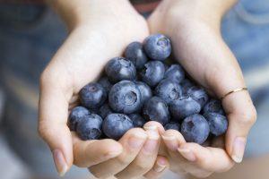 Superfood Beeren: Hände mit Blaubeeren