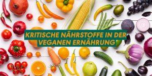 Kritische Nährstoffe in der veganen Ernährung Titelbild